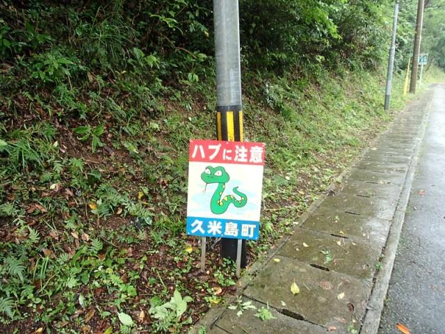 久米島2日目3