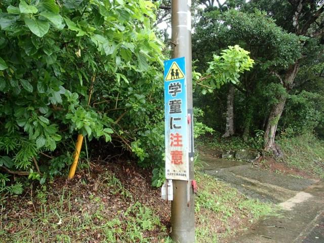 久米島2日目4