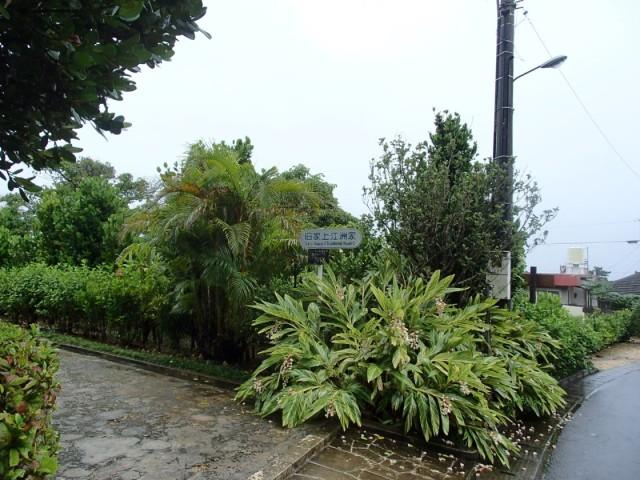 久米島の上江洲家1