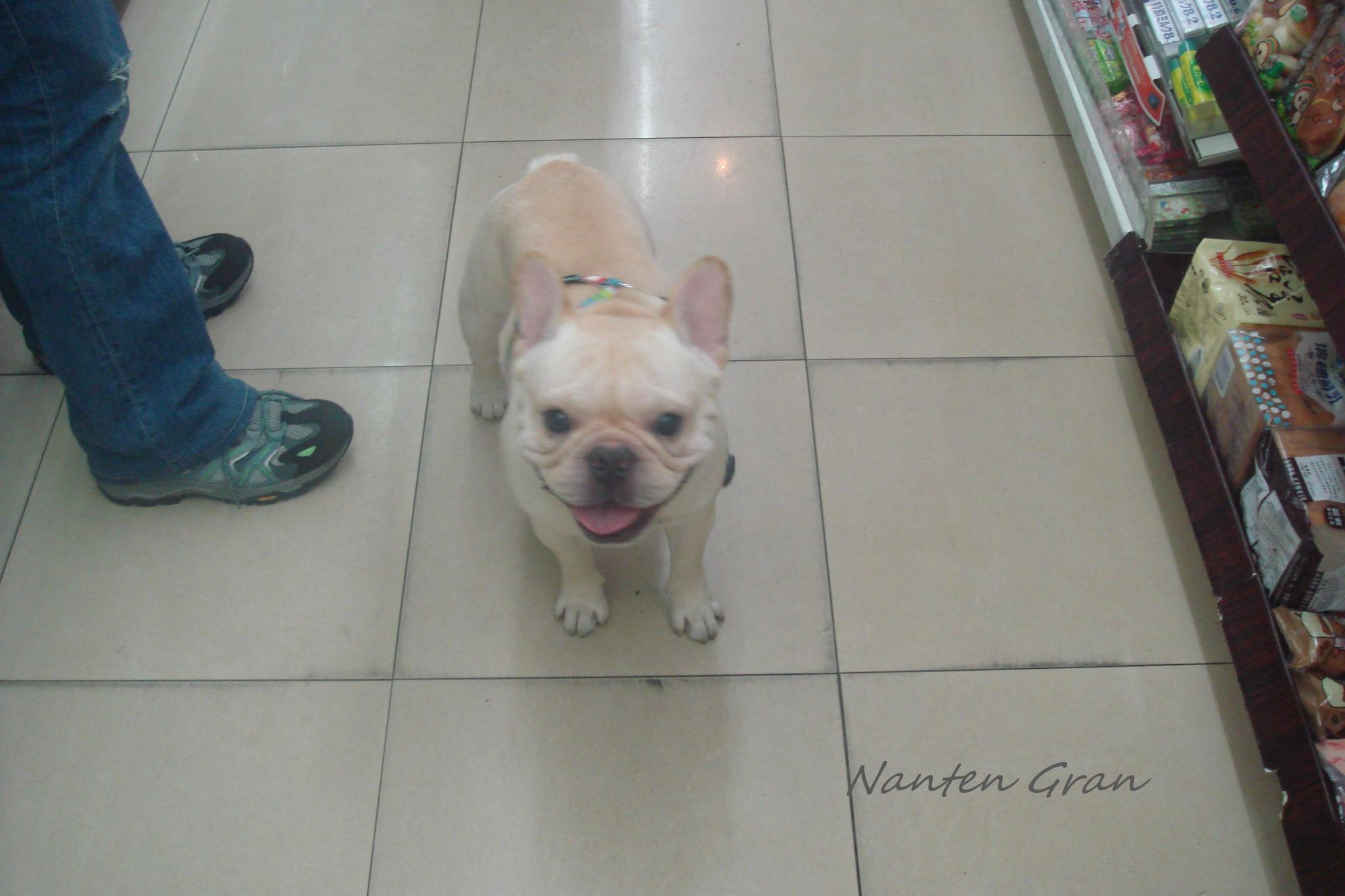 2009_台湾_5